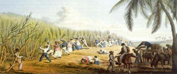 Brazilslavery